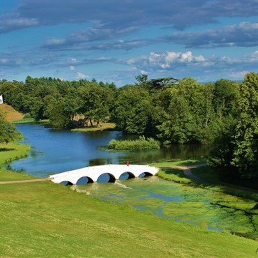 Painshill Vines & Wines